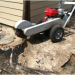 Stump Grinding Services in Denver, CO